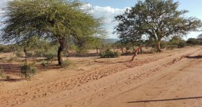 Mokolodi 1. 2,622 m2 Residential Plot. Freehold.